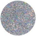 Young Nails- Las Vegas Hologram glitters